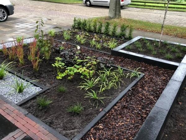 Met moderne borderbeplanting zorg je voor strakke lijnen in je moderne tuin