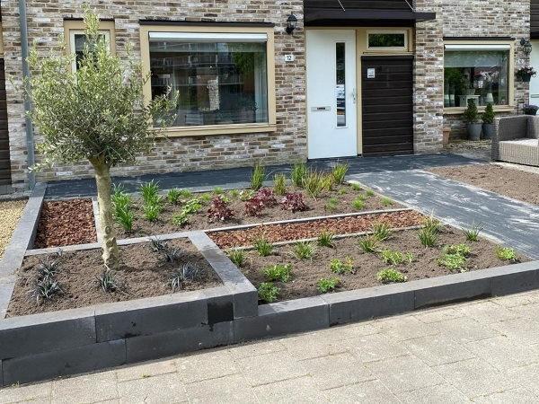 De beplanting in een moderne tuin zorgt voor een rustig en sfeervol geheel